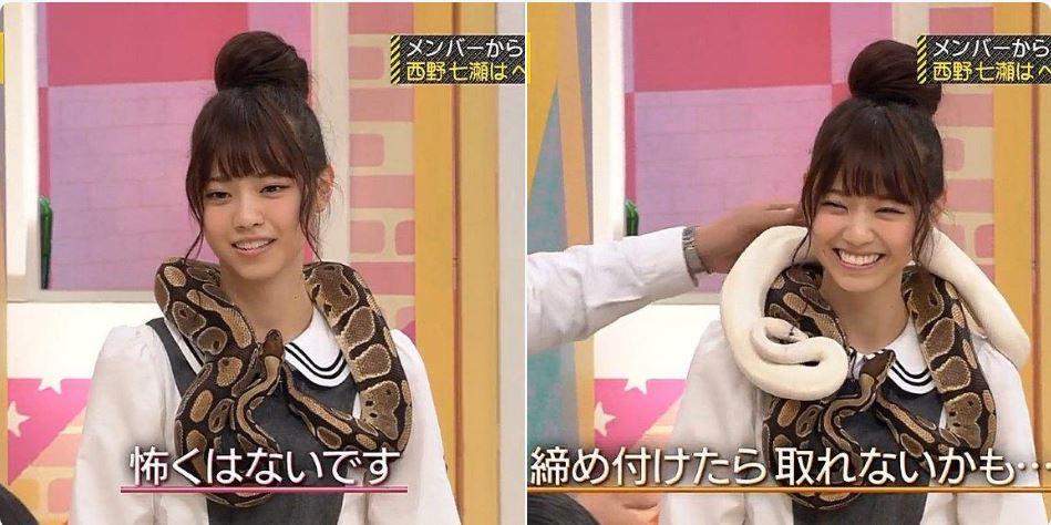 西野七瀬 ニシキヘビ