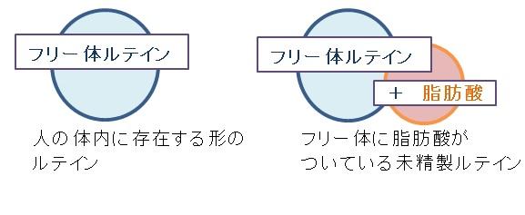 f:id:factor5k:20170614124043j:plain