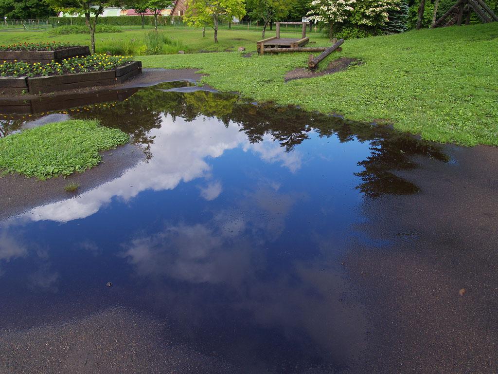 個別「水たまりに映るセカイ」の写真、画像 - fafner's fotolife