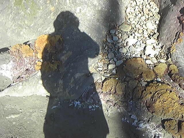 f:id:fairy-risa:20170204091800j:image:w360