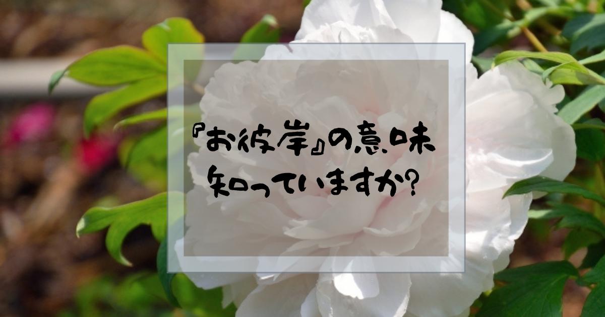 f:id:fairysgarden:20210308155104p:plain