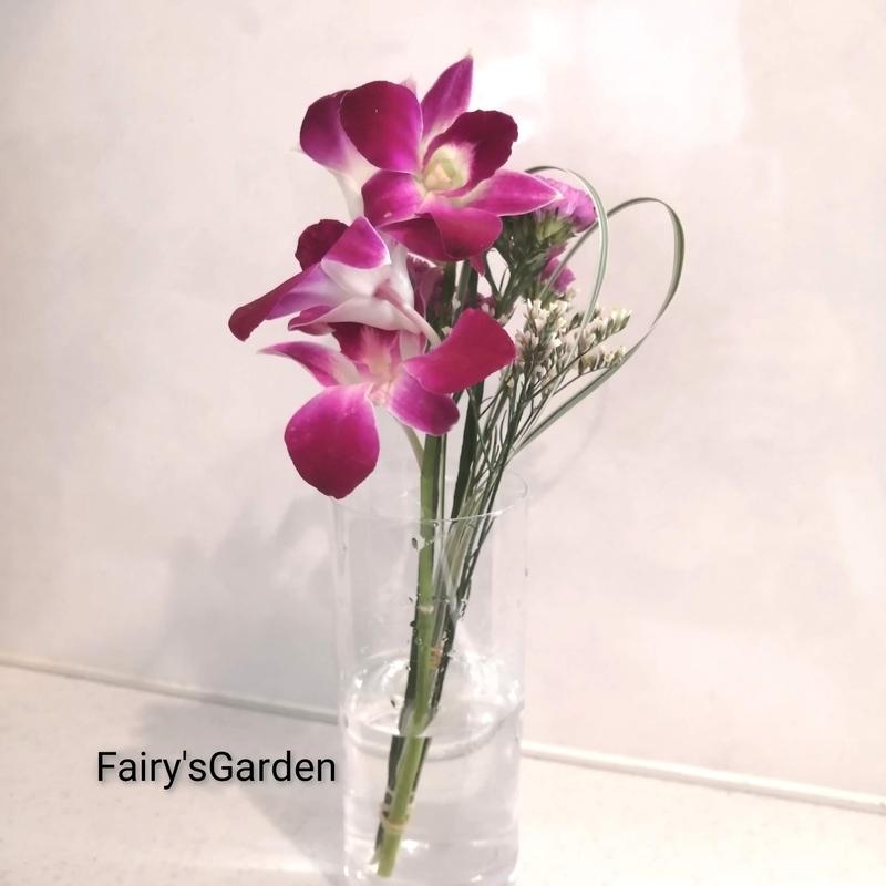 f:id:fairysgarden:20210413142808j:plain