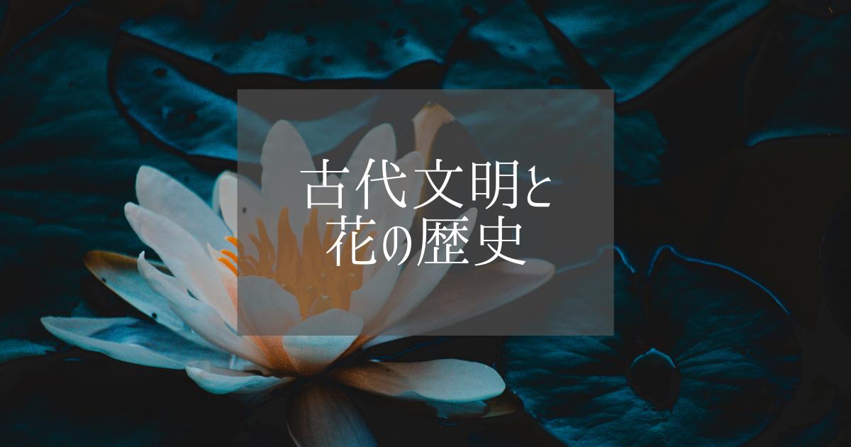 f:id:fairysgarden:20210508142111p:plain