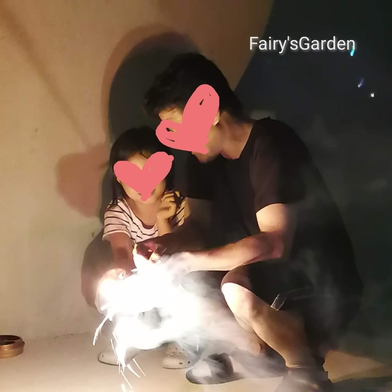 f:id:fairysgarden:20210728060652j:plain