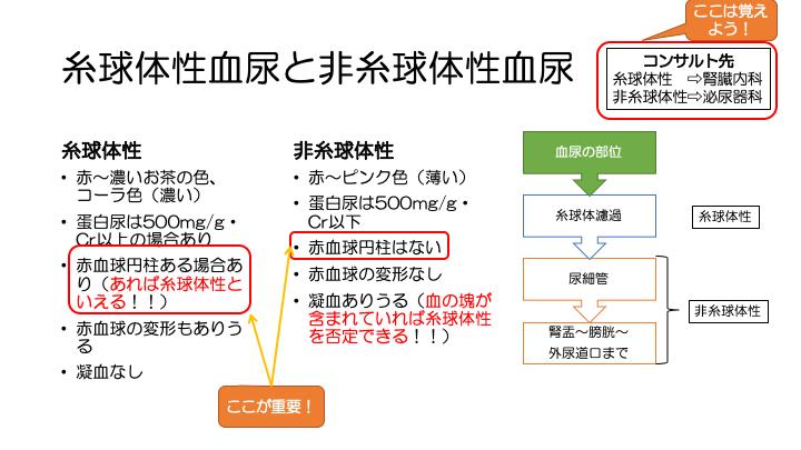 f:id:family-doctor-shin:20201207215521p:plain