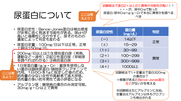 f:id:family-doctor-shin:20201207215613p:plain