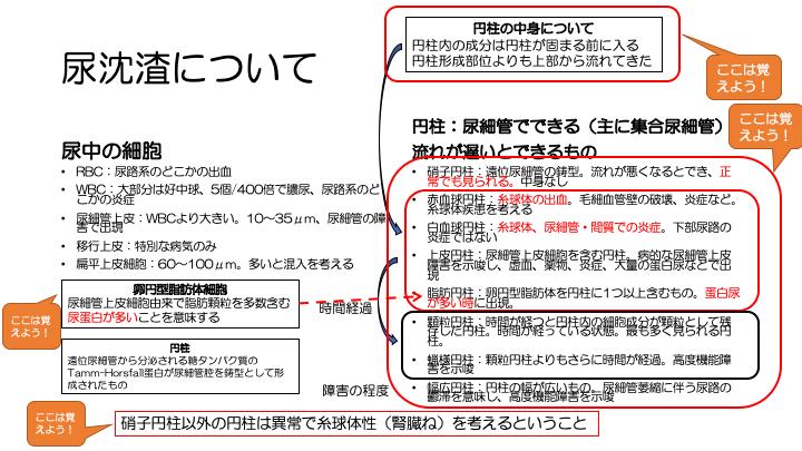 f:id:family-doctor-shin:20201207215631p:plain