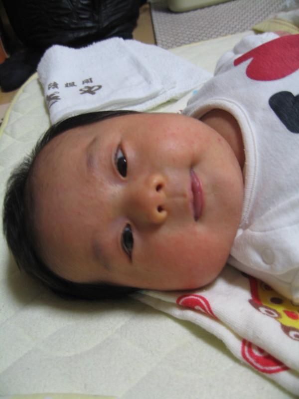 f:id:familycar:20120119221459j:image