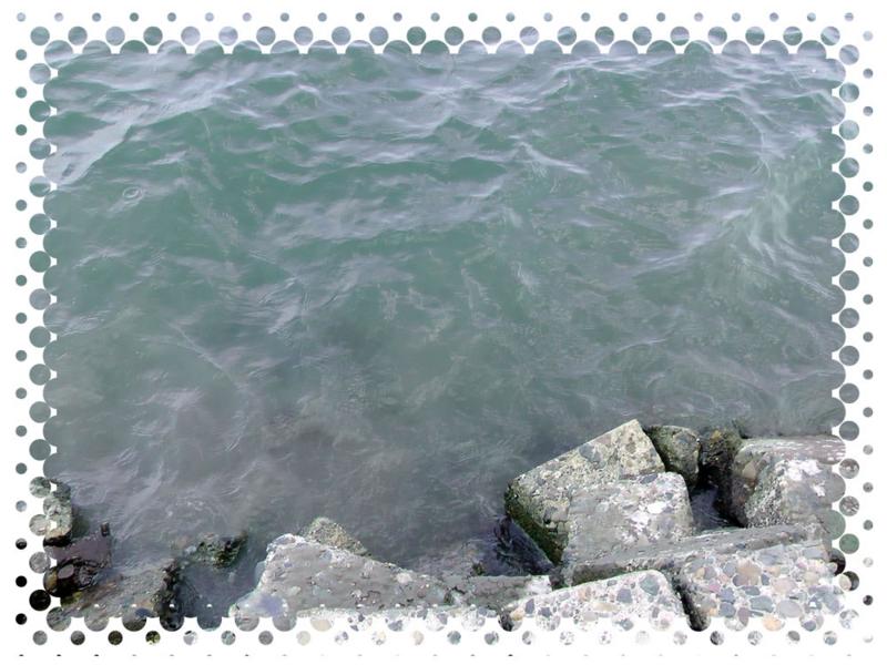 f:id:familyfishing:20140727224324j:plain