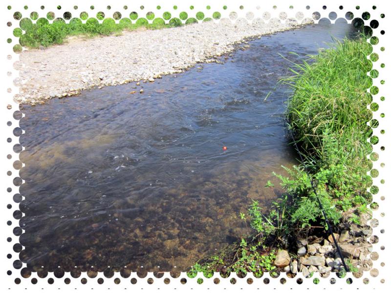 f:id:familyfishing:20150809171603j:plain