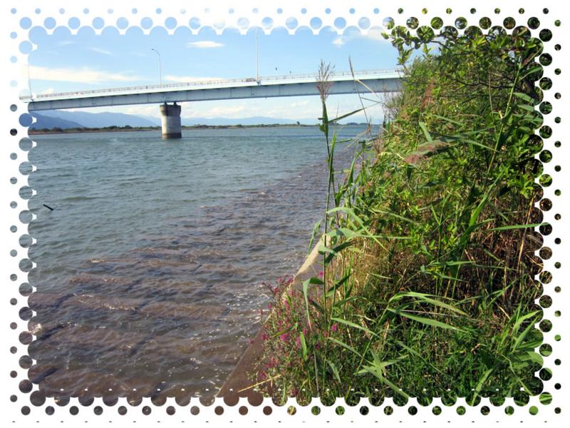 f:id:familyfishing:20150915233753j:plain