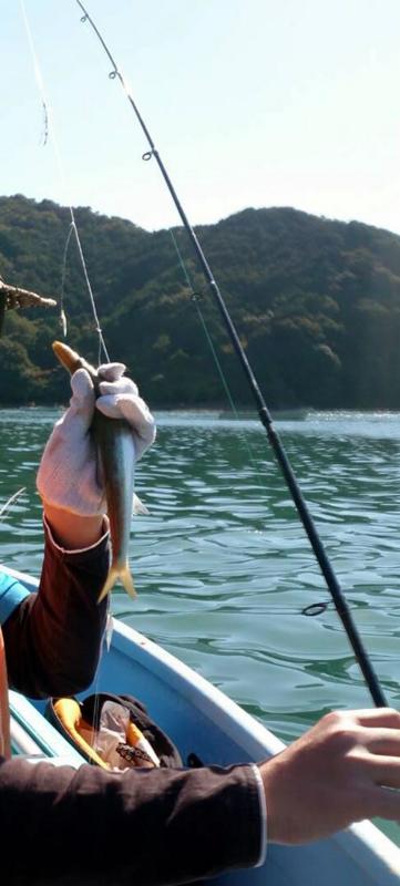 f:id:familyfishing:20151030221600j:plain