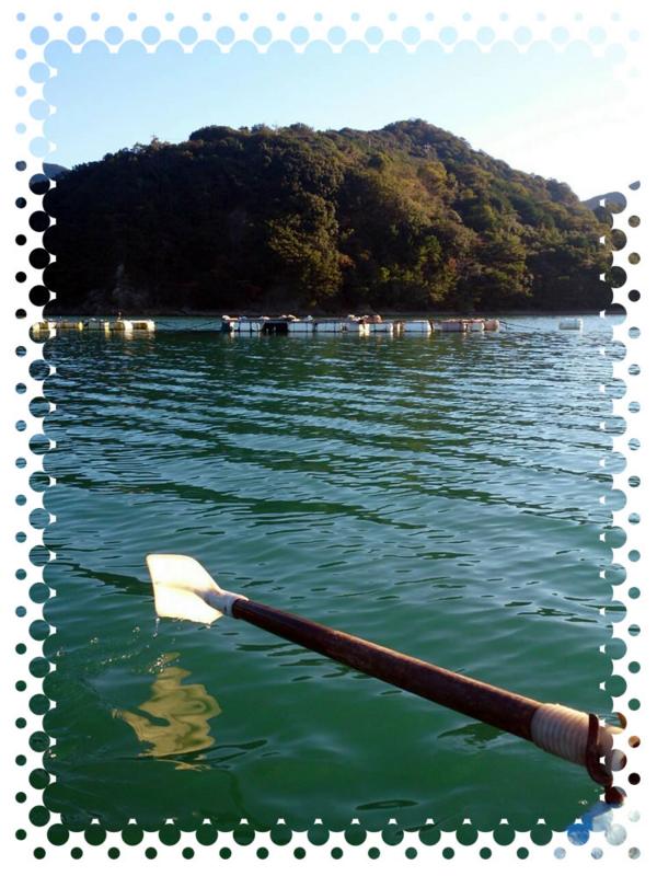 f:id:familyfishing:20151030221602j:plain