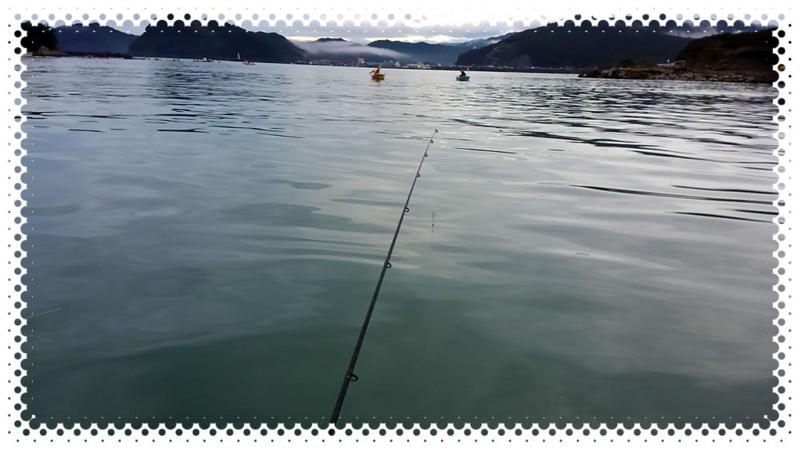 f:id:familyfishing:20151115231930j:plain