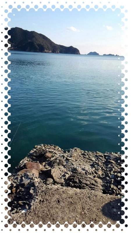 f:id:familyfishing:20160205191629j:plain