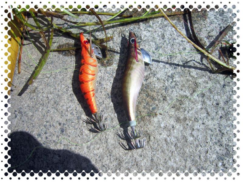 f:id:familyfishing:20160529210941j:plain