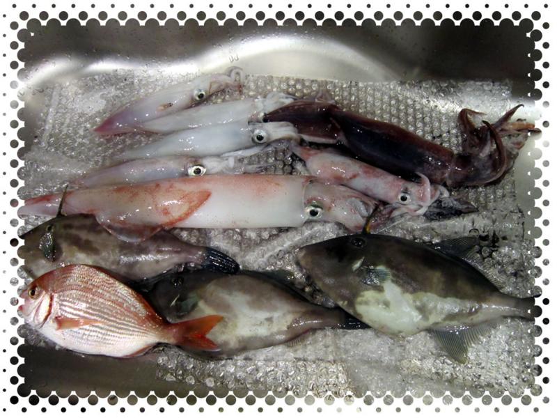 f:id:familyfishing:20160709152513j:plain