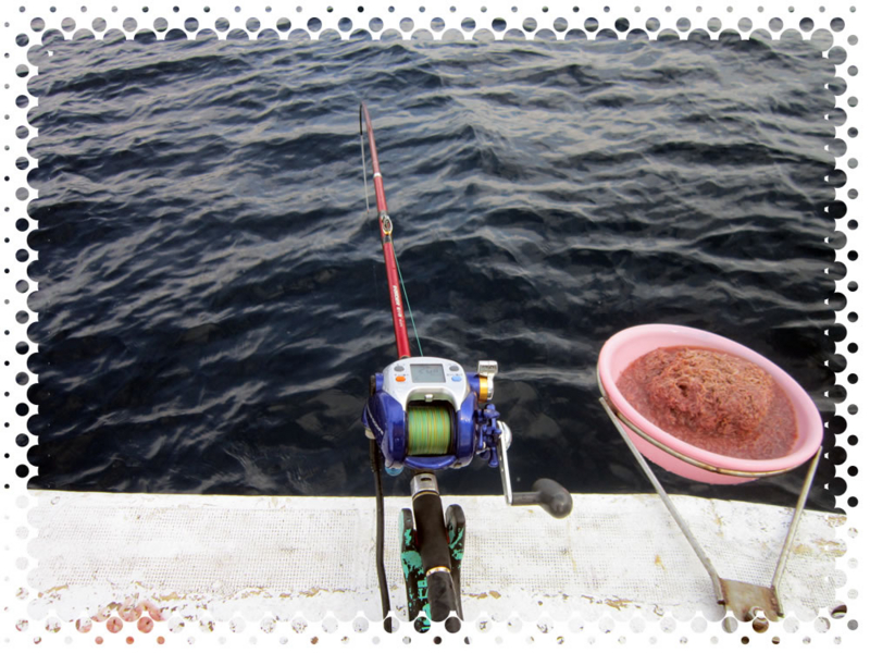 f:id:familyfishing:20160709152517j:plain