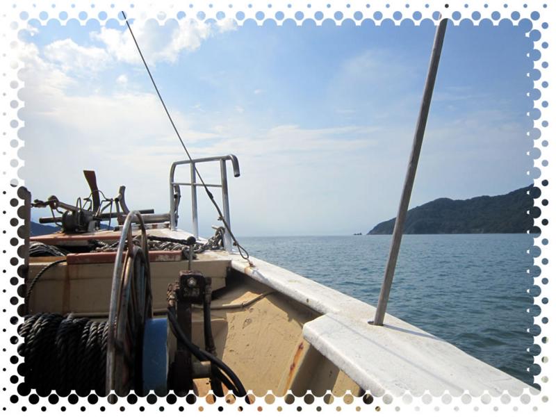 f:id:familyfishing:20160709152519j:plain