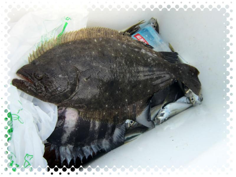 f:id:familyfishing:20160815235409j:plain