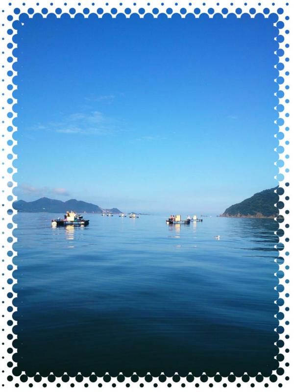 f:id:familyfishing:20161004070926j:plain