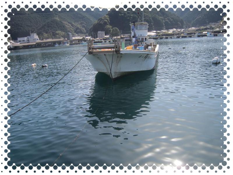 f:id:familyfishing:20161109200236j:plain