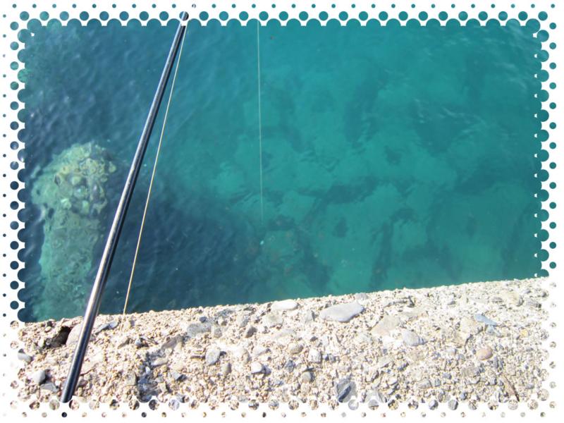 f:id:familyfishing:20161109200244j:plain