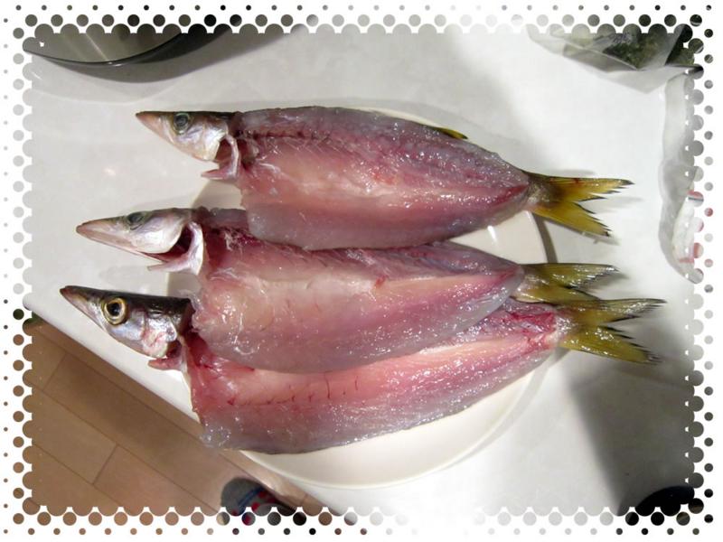 f:id:familyfishing:20170108224718j:plain