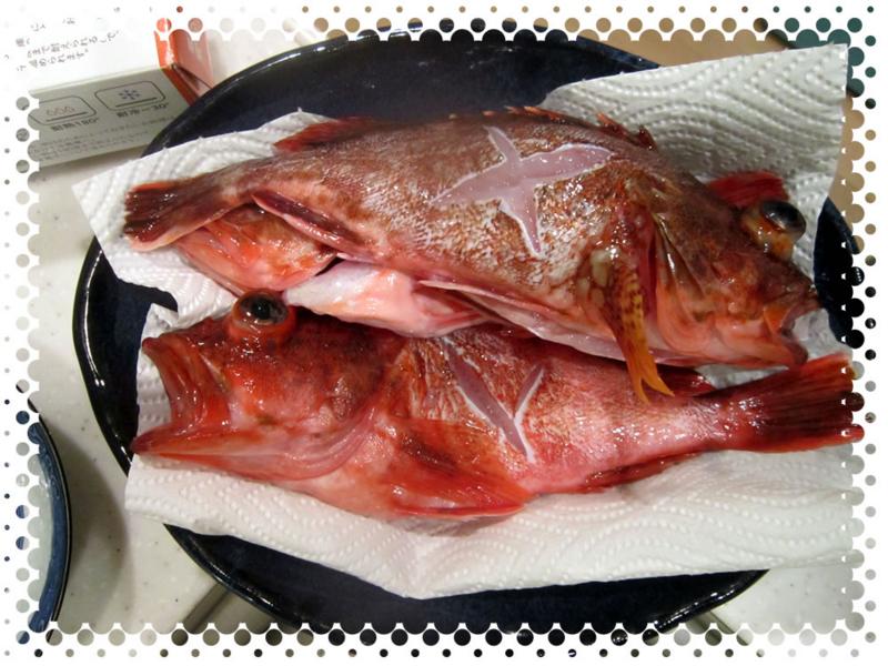 f:id:familyfishing:20170321202751j:plain