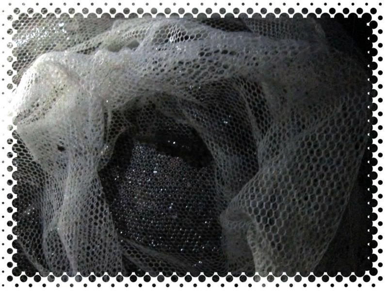 f:id:familyfishing:20170428222006j:plain