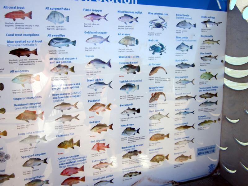 f:id:familyfishing:20170830002050j:plain