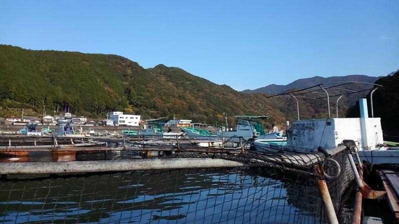 f:id:familyfishing:20171130215515j:plain