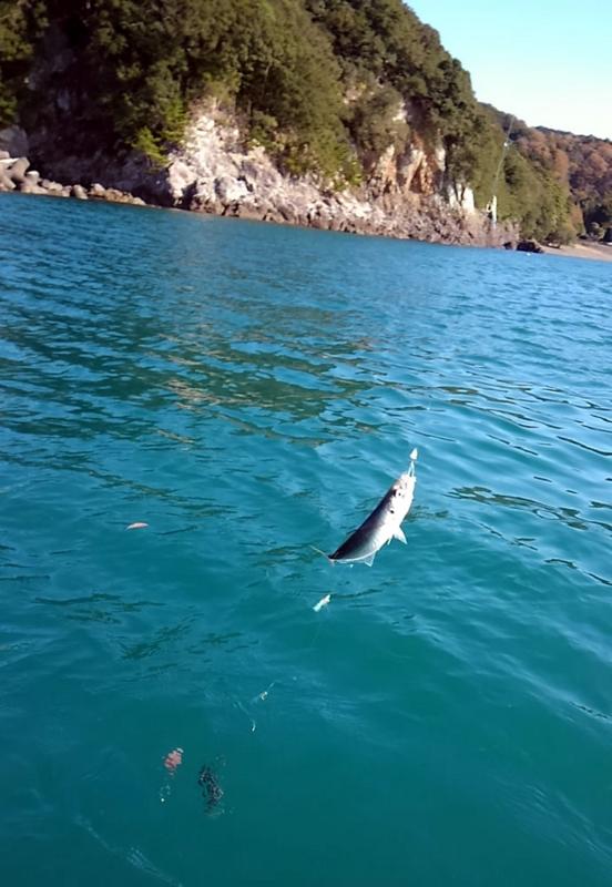 f:id:familyfishing:20171210103415j:plain
