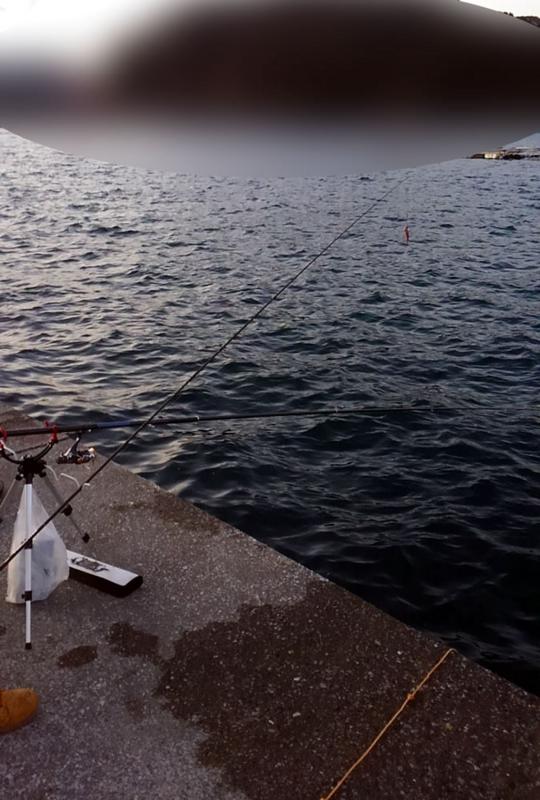 f:id:familyfishing:20180104143641j:plain