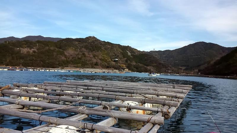f:id:familyfishing:20180108170924j:plain