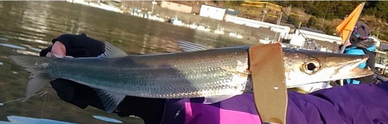 f:id:familyfishing:20180108170926j:plain