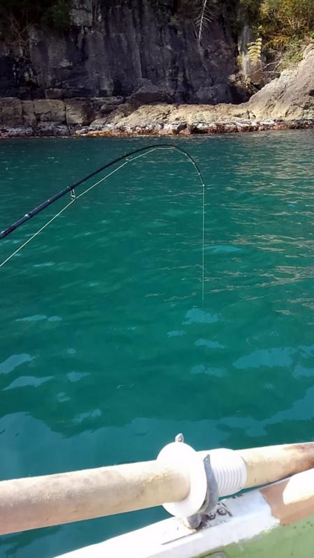 f:id:familyfishing:20180319215030j:plain