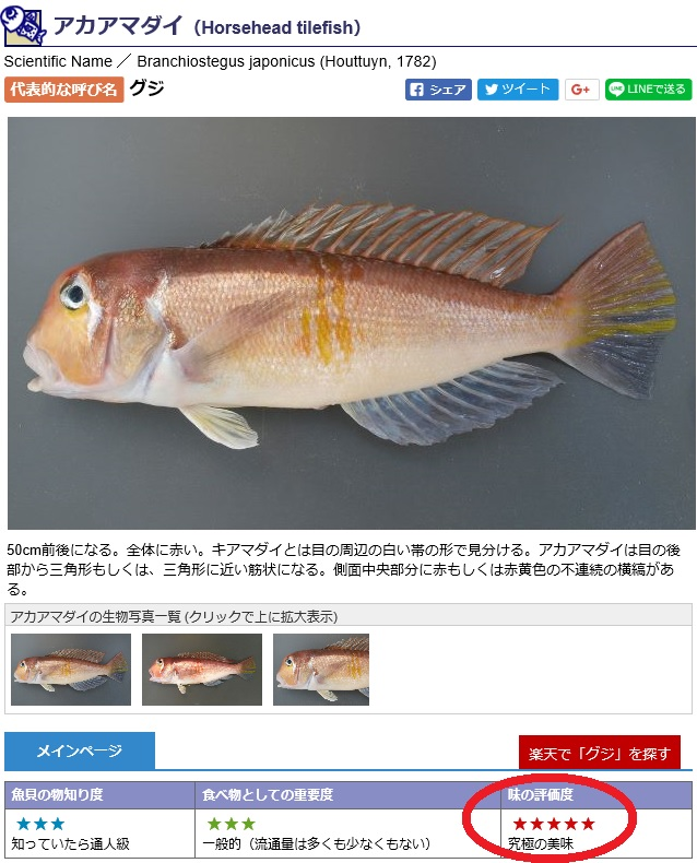 f:id:familyfishing:20180320095412j:plain