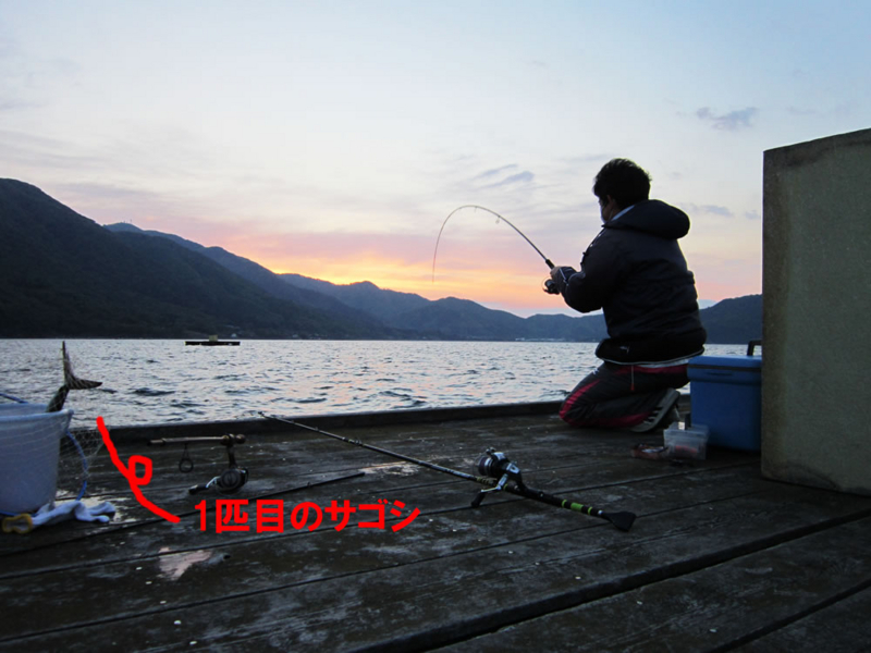 f:id:familyfishing:20180430214156j:plain
