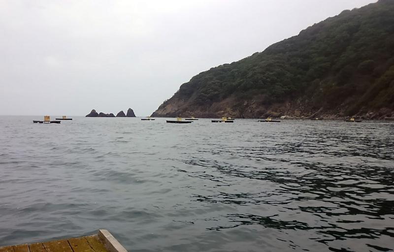 f:id:familyfishing:20180430214158j:plain