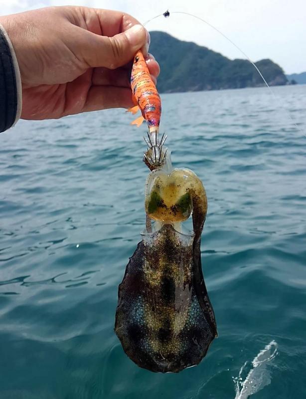 f:id:familyfishing:20180822194815j:plain