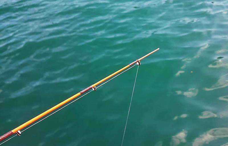f:id:familyfishing:20181029225109j:plain