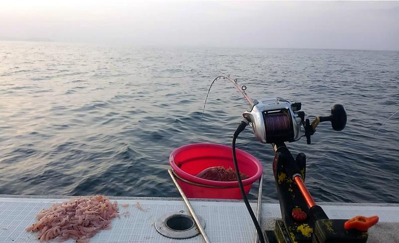 f:id:familyfishing:20181113195825j:plain