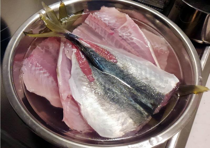 f:id:familyfishing:20181119190134j:plain