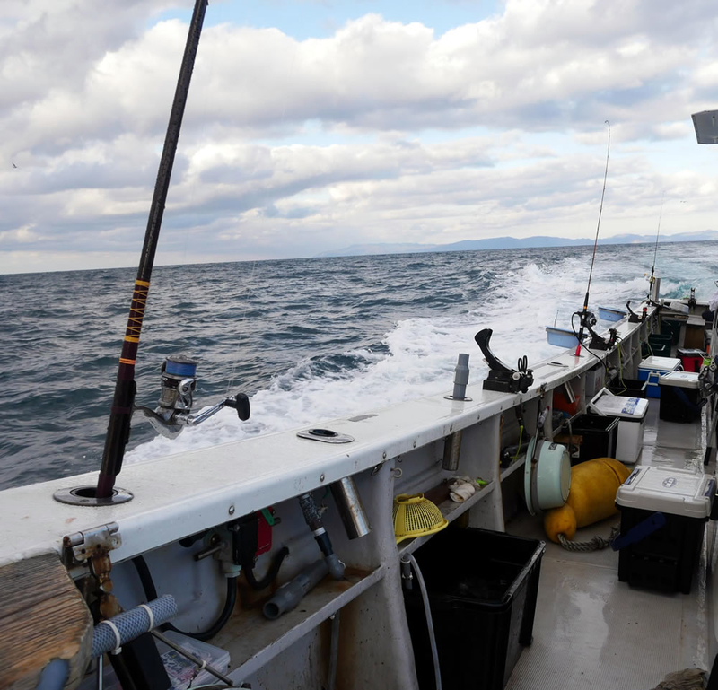 f:id:familyfishing:20190116001353j:plain