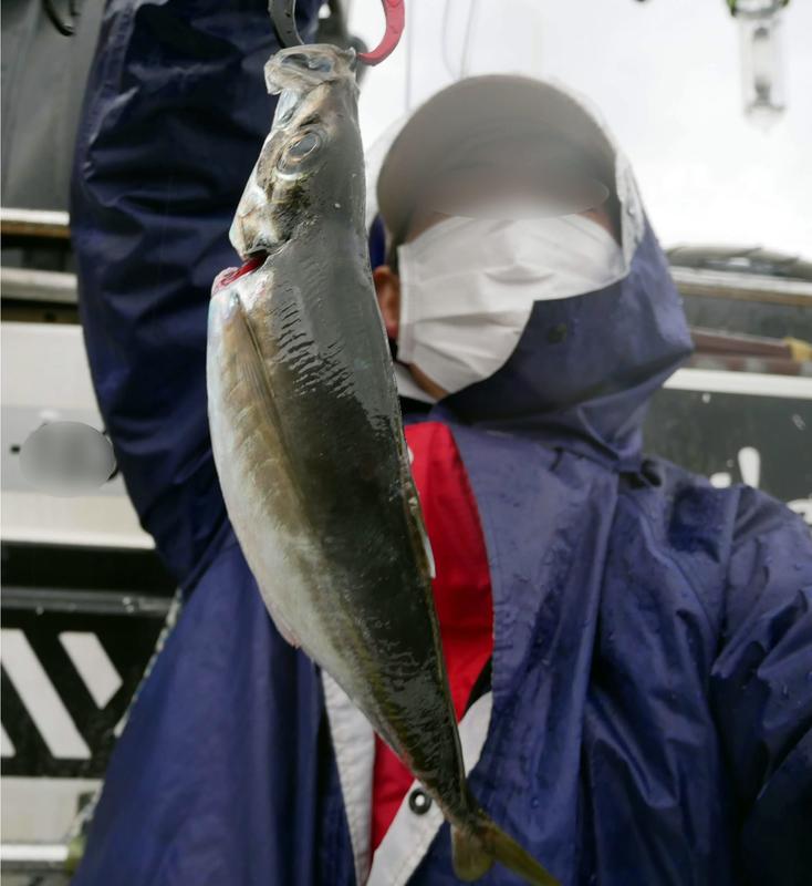 f:id:familyfishing:20190401234047j:plain