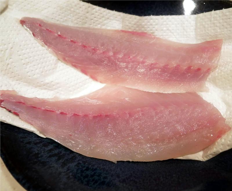 f:id:familyfishing:20190403222903j:plain