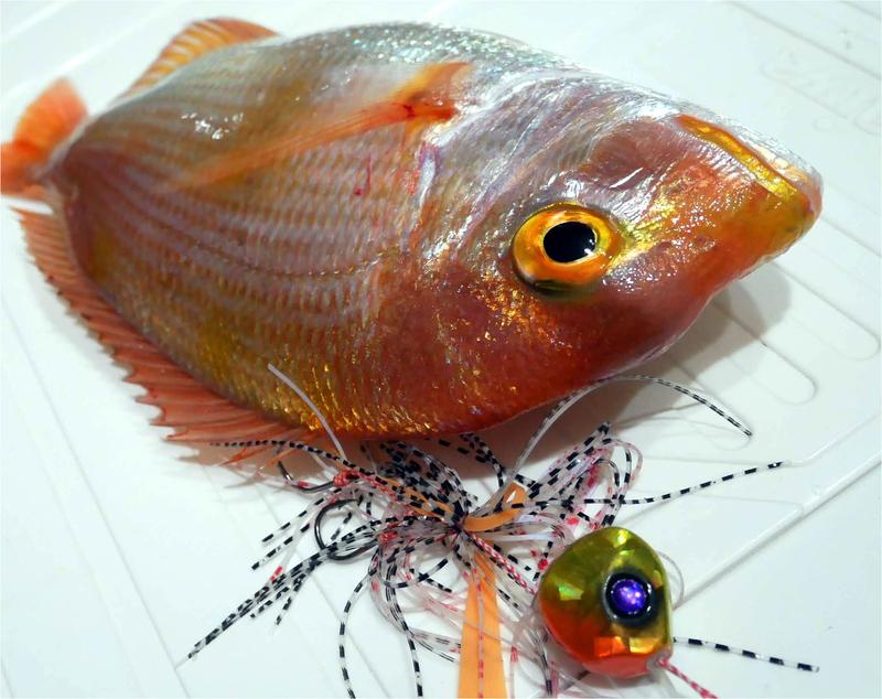 f:id:familyfishing:20190430212123j:plain