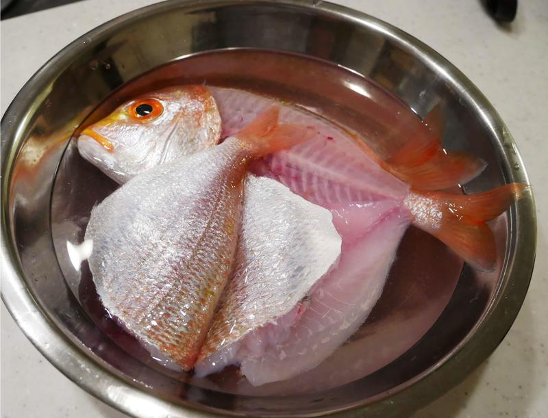 f:id:familyfishing:20190518181802j:plain