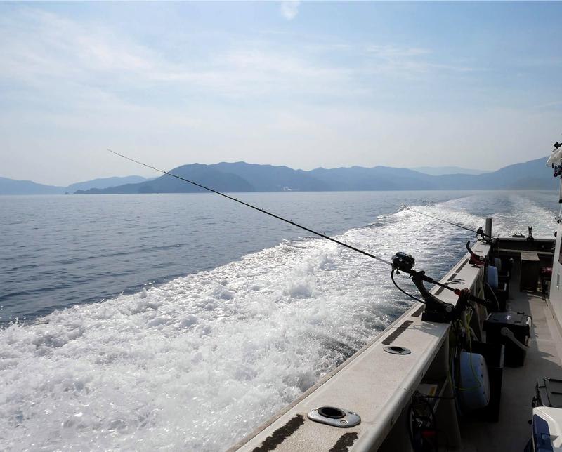 f:id:familyfishing:20190527231102j:plain